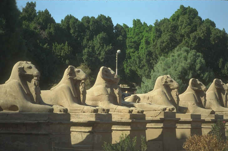 Avenue of Sphinxes Egypt.jpg