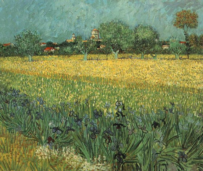 File:View of Arles with Irises in the Foreground, 1888.jpg