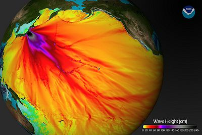 Tsunami Wave Height Pacific.jpg