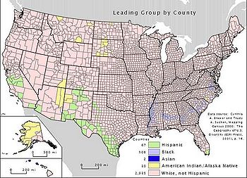 Map Leading Group by County US.jpg