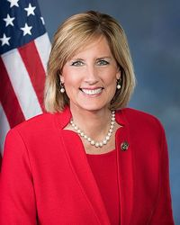 Claudia Tenney, 115th official photo.jpg