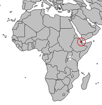 Location of Djibouti.png