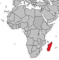 Location of Madagascar.png