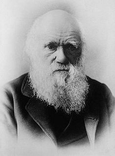evolution darwin theory